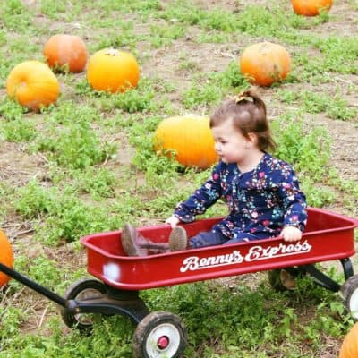Pumpkin Picking & Fall Fashion Favorites