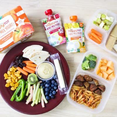 Easy Toddler Lunch Ideas for Daycare