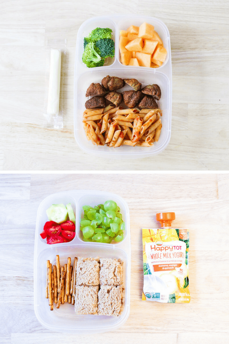 Easy Toddler Lunch Ideas for Daycare | The Mom Friend